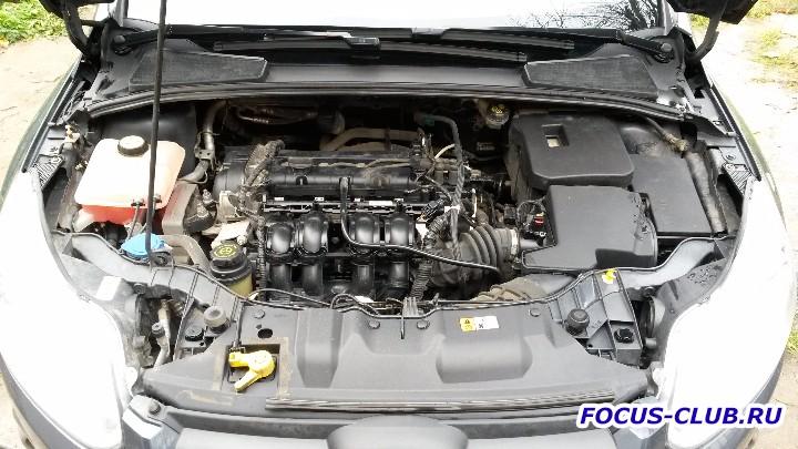 Продам Ford Focus 3 125л.с. PS 75000 км. Без ДТП - 20161012_141116.jpg