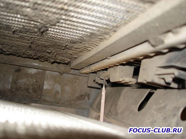 Мой радиатор или - Тополиный пух, жара, июнь...  - radiator2.jpg