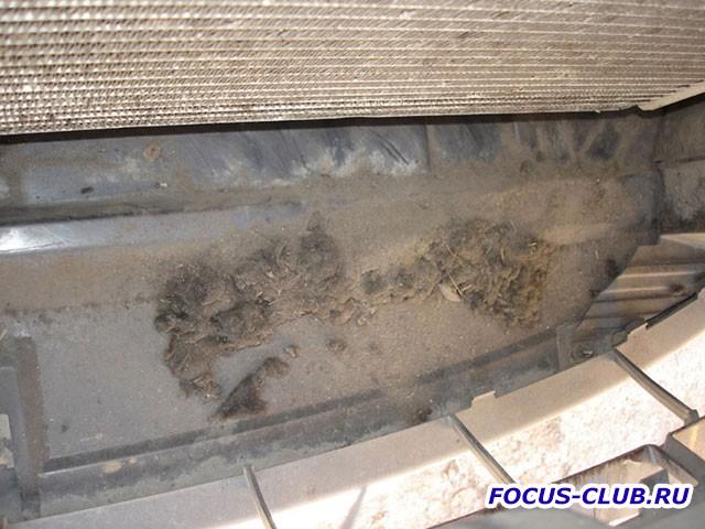 Мой радиатор или - Тополиный пух, жара, июнь...  - radiator7.jpg