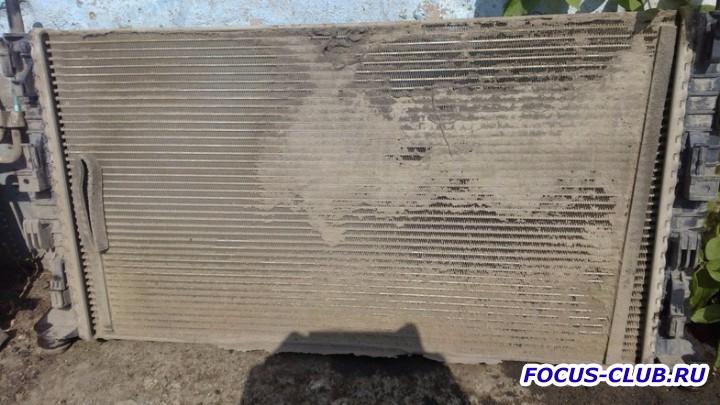 Грязный радиатор Ford Focus 2 - 210819478.jpg