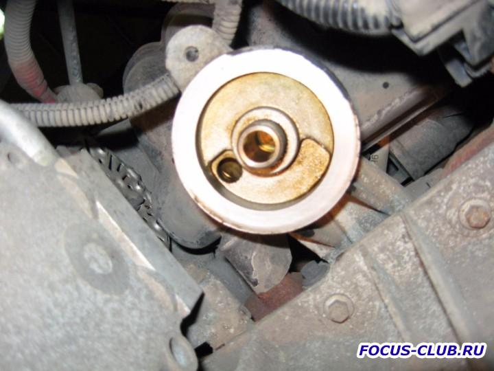 Замена моторного масла и фильтров на Focus 1 Фотоотчёт  - IMG_3318.jpg