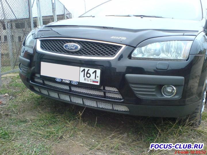 Защитная сетка радиатора Ford Focus 2 дорестайлинг - DSC00102.jpg